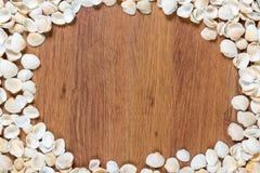 Coperture del mare sulla sabbia Priorità bassa della spiaggia di estate Vista superiore Conchiglie su una tavola di legno - un ri Fotografia Stock Libera da Diritti
