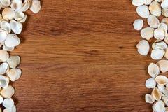 Coperture del mare sulla sabbia Priorità bassa della spiaggia di estate Vista superiore Conchiglie su una tavola di legno - un ri Immagine Stock