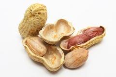 Coperture dell'arachide Immagini Stock Libere da Diritti