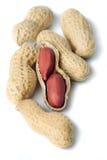 Coperture dell'arachide isolate su bianco Fotografia Stock