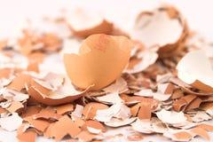 Coperture dell'uovo arrestate vicino fotografie stock libere da diritti