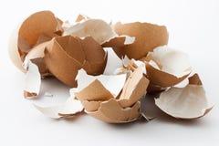 Coperture dell'uovo rotte Fotografie Stock Libere da Diritti