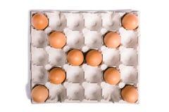 Coperture dell'uovo in scatola delle uova Fotografie Stock