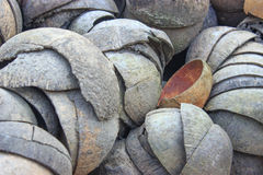 Coperture della noce di cocco Fotografie Stock