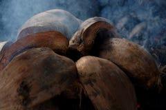 Coperture della noce di cocco in fumo Fotografie Stock Libere da Diritti