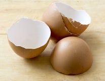 Coperture delle uova Fotografia Stock Libera da Diritti