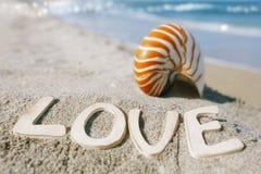 Coperture di nautilus con il messaggio di amore sulla spiaggia di Florida sotto il sole Fotografia Stock Libera da Diritti