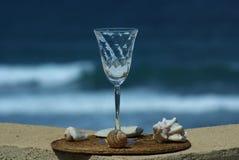 Coperture di vetro e del mare di vino Fotografia Stock