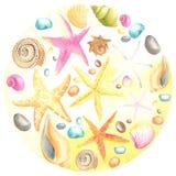 Coperture e stelle marine sulla priorità bassa della sabbia Fotografie Stock Libere da Diritti
