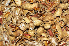Coperture fracassate dell'arachide Immagini Stock
