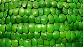 Coperture indigene della noce di cocco di struttura dipinte verdi Fotografia Stock Libera da Diritti
