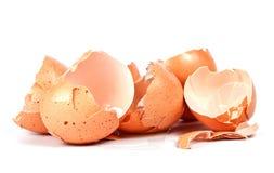 Coperture rotte dell'uovo isolate su bianco Fotografia Stock