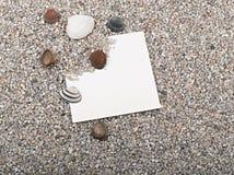 Coperture, stelle marine, strato del documento in bianco Immagini Stock Libere da Diritti