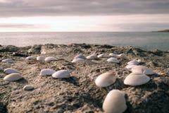 Coperture su una spiaggia rocciosa Fotografie Stock Libere da Diritti