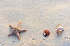 Coperture sulla sabbia Fotografia Stock Libera da Diritti