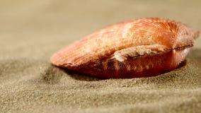 Coperture sulla sabbia, fine dell'oceano su, rotazione archivi video