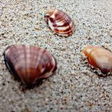 Coperture sulla spiaggia immagini stock libere da diritti