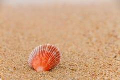 Coperture sulla spiaggia. Fotografia Stock