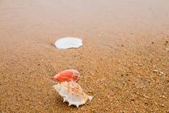 Coperture sulla spiaggia. Immagine Stock Libera da Diritti