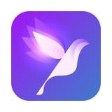 Copia del Twitter-icono Imagenes de archivo