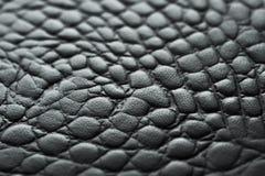 Copie de cuir de Krokodile dans le noir Photographie stock libre de droits