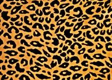 Copie de léopard Photo stock