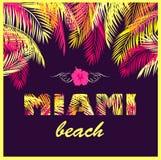 Copie de partie de T-shirt avec le lettrage de Miami Beach avec les palmettes jaunes et roses sur le fond foncé illustration de vecteur