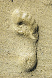 Copie de pied sur la plage Photo libre de droits