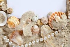 Copie el espacio en blanco de la perla de los shelles de la playa de la arena del verano del espacio Fotos de archivo