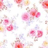 Copie sans couture de vecteur de roses douces pourpres Photos stock