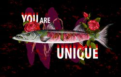 Copie unique de mode pour des clothers avec le barracuda et les roses de poissons Illustration de vecteur Images stock