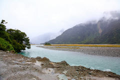 Copland river view in the Westland Tai Poutini National Park. Royalty Free Stock Photos
