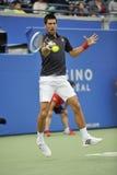 Copo 2012 de Djokovic Rogers (178) Fotos de Stock Royalty Free