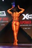 Copo 2012 de X-POWER Fotografia de Stock Royalty Free