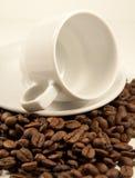 Copo branco da porcelana em feijões de café roasted Foto de Stock Royalty Free