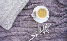 Copo branco do café aromático quente com a cookie sob a forma do abeto fotografia de stock royalty free