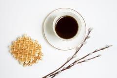 Copo branco do ramo do salgueiro do coffeea em uma tabela de madeira branca Copie o espaço Imagens de Stock