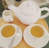 Copo branco erval do chá fotografia de stock