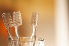 Copo com as escovas de dentes no fundo borrado Foto de Stock Royalty Free