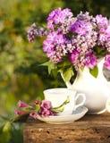 copo com café e lilac Fotografia de Stock Royalty Free