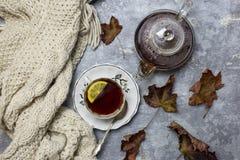 Copo com chá preto e limão e pires, folhas de bordo e lenço feito malha próximo, um fundo cinzento foto de stock royalty free