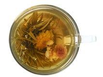 Copo com chá verde Imagens de Stock
