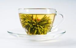 Copo com chá de florescência da flor Fotos de Stock Royalty Free