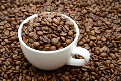 Copo com grãos de café em um fundo dos feijões de café Imagem de Stock
