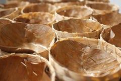 Copo das folhas da banana Imagem de Stock