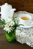 Copo da flor branca do chá e da mola Imagens de Stock