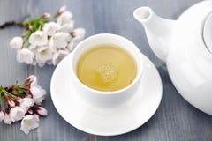 Copo da flor de cerejeira do chá verde e do japonês imagens de stock royalty free