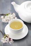 Copo da flor de cerejeira do chá verde e do japonês foto de stock royalty free