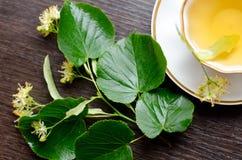 copo da porcelana do chá do Linden em um fundo da madeira escura Imagem de Stock