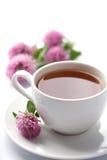 Copo das flores do chá erval e do trevo isoladas Fotografia de Stock Royalty Free